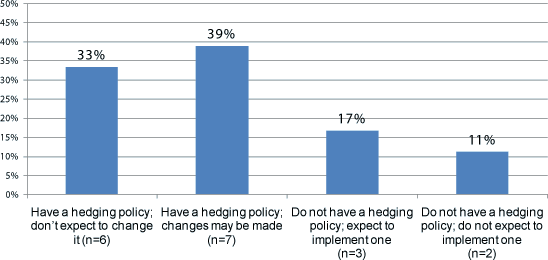 Hedging Policy